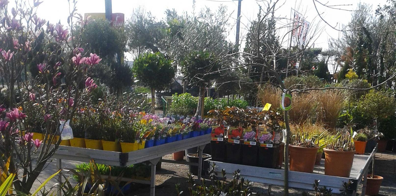Jardinerie et artisan fleuriste indépendante à Périgueux, Dordogne